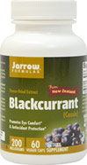 Blackcurrant Freeze-Dried Extract 200 mg