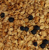 Honey Sweet Blueberry Granola