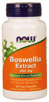 Boswellia Extract 250 mg plus Turmeric