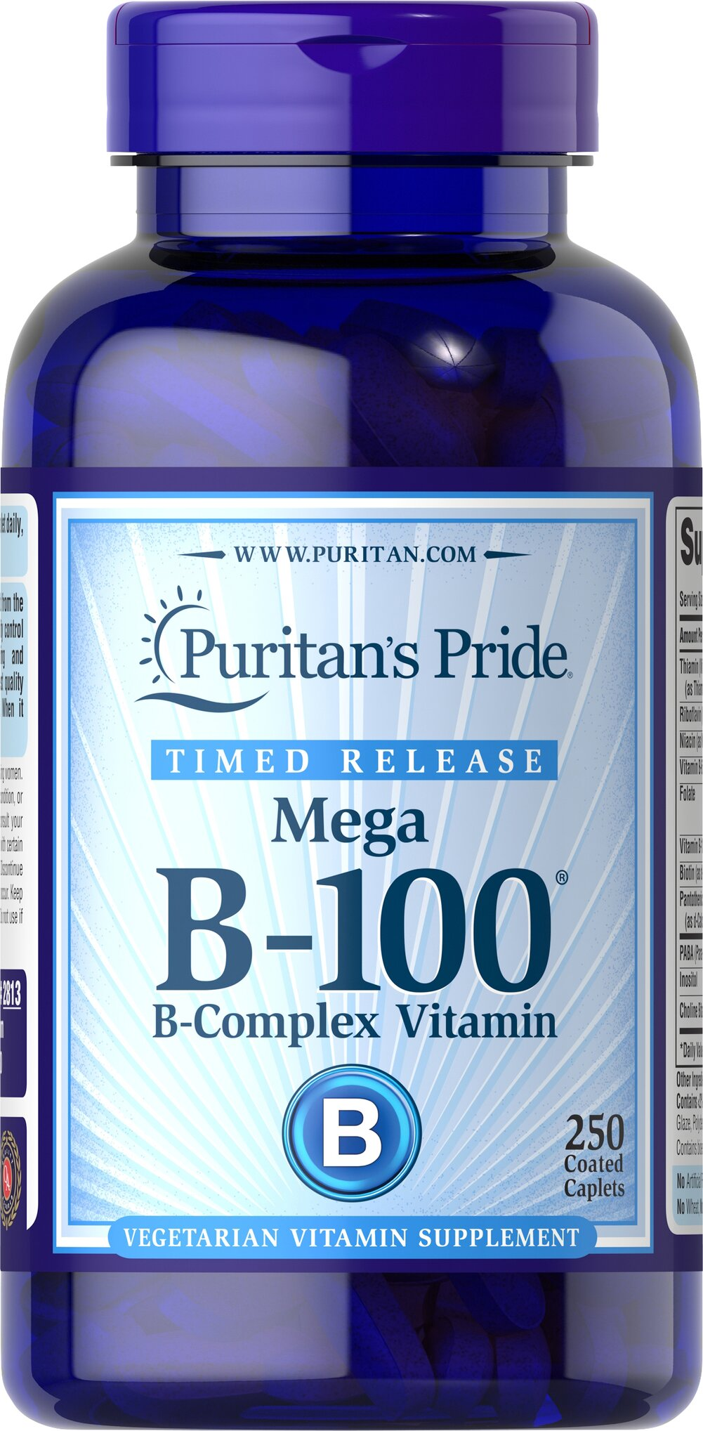 Vitamin B-100® Complex Timed Release <p>Each nutrient in the Vitamin B-100® Complex performs a unique role in maintaining proper metabolic functioning and is essential for well being.** When taken together in a complex formula, the B Vitamins help to maintain the health of the nervous system, skin, eyes and hair.** This product is specially formulated to provide a gradual release of vitamins over a prolonged period of time.</p>  250 Tablets 100 mg $44.39