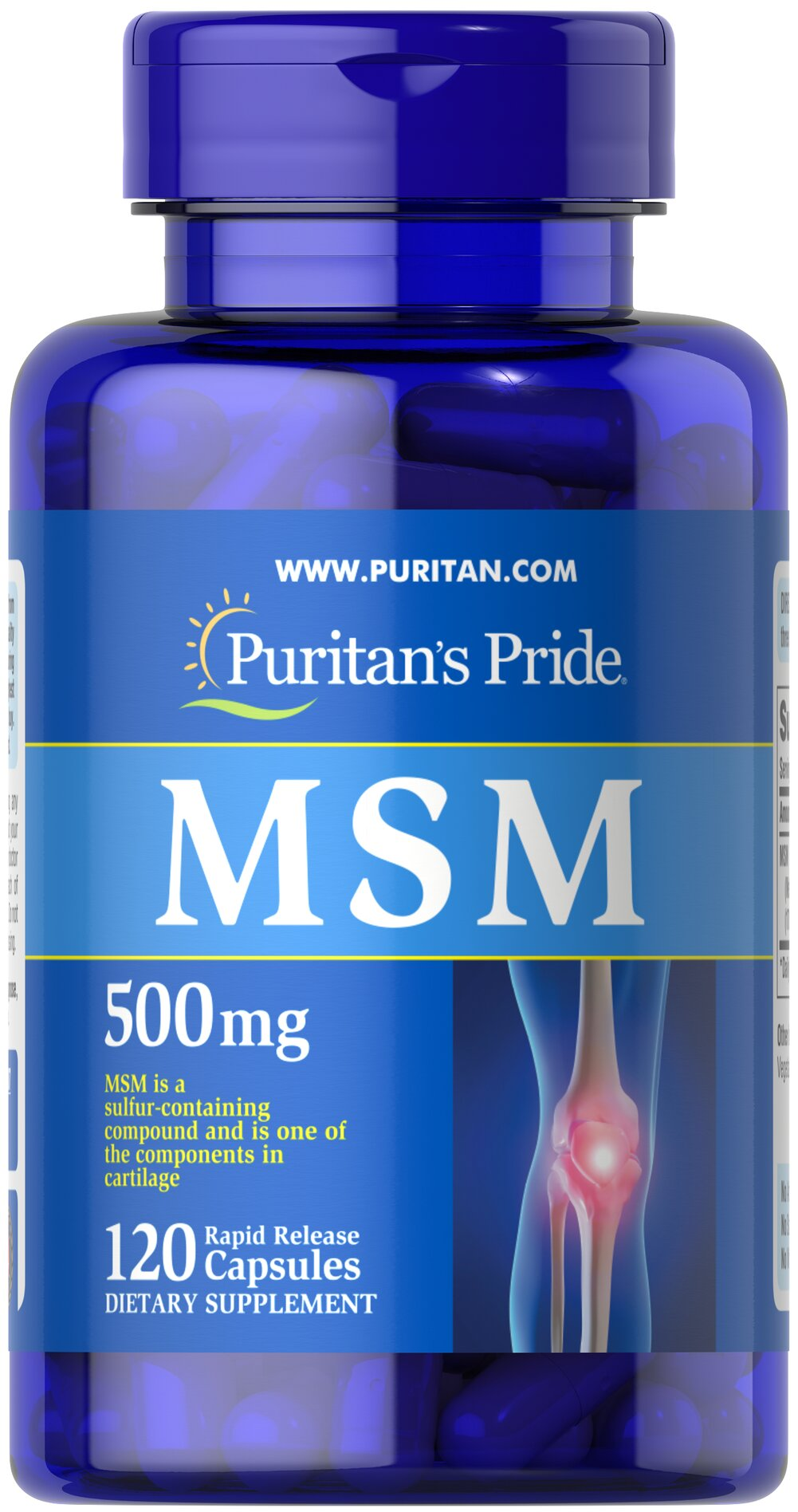 MSM 500 mg Thumbnail Alternate Bottle View