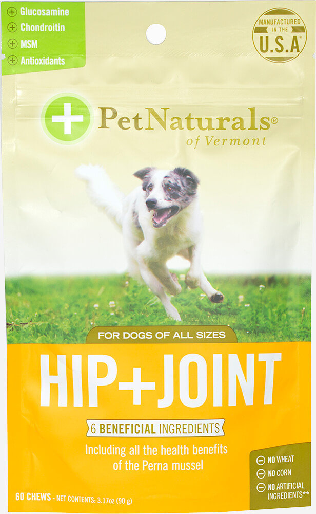 Hip + Joint Chews for Dogs Thumbnail Alternate Bottle View