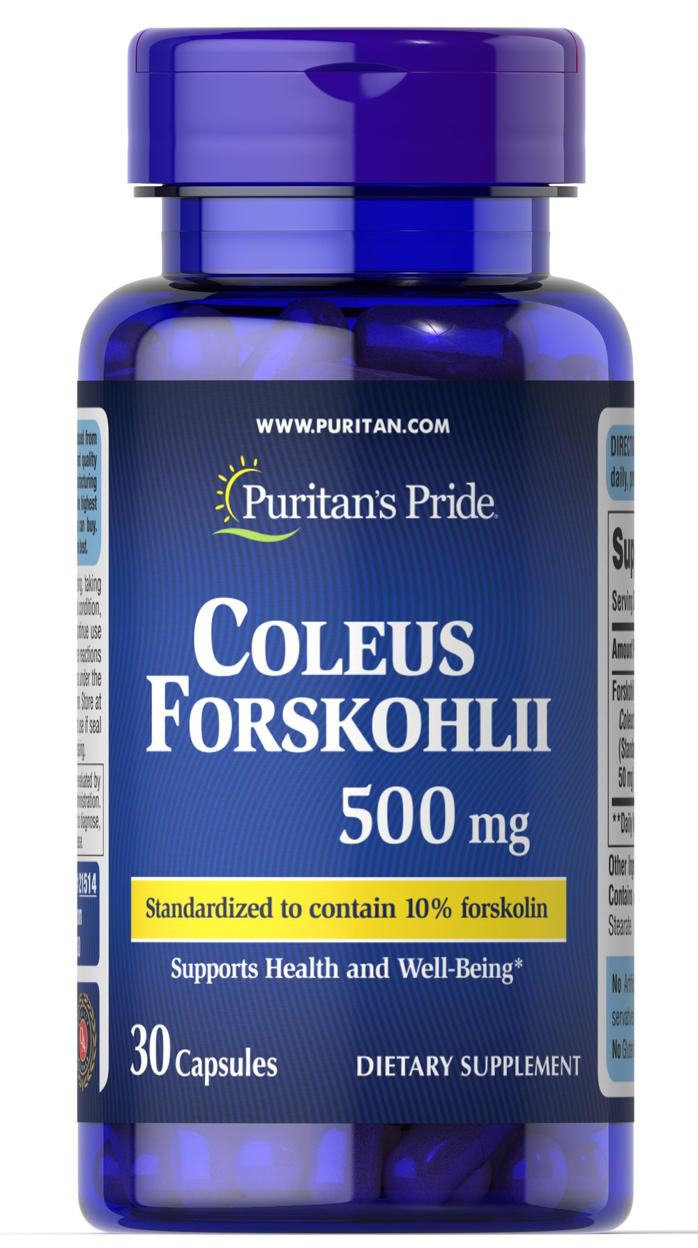 Coleus Forskohilii 500mg Thumbnail Alternate Bottle View