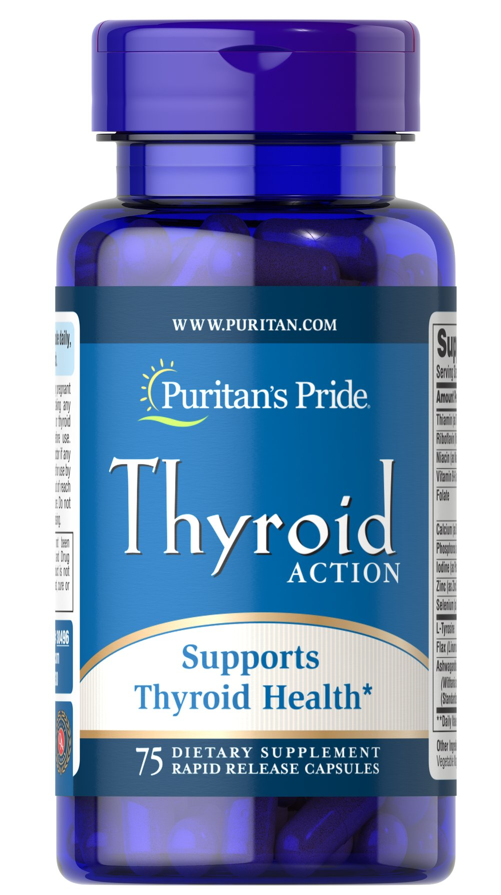 Thyroid Action