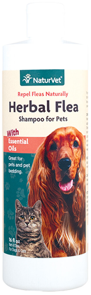 Herbal Flea Shampoo