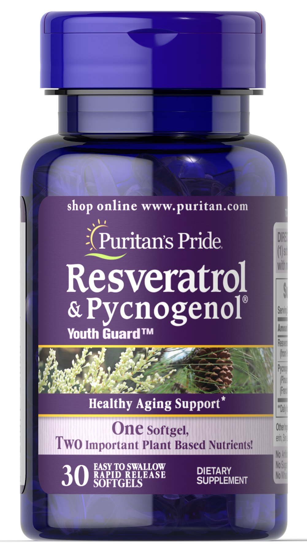 Resveratrol 100 Mg Pycnogenol 30 Mg 30 Softgels Antioxidants Supplements Puritan S Pride