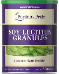 Soy Lecithin Granules 1680 mg