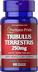 Tribulus Terrestris 250 mg