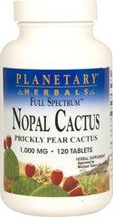 Nopal Cactus Prickly Pear 1,000 mg