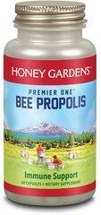 Bee Propolis 650 mg