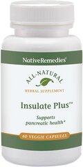 Insulate Plus