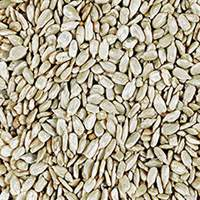 Organic Shelled Sunflower Seeds