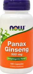 Panax Ginseng 500 mg