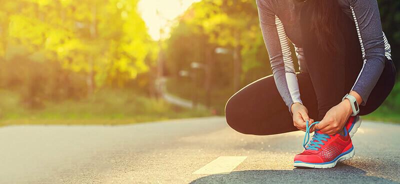 Joint Health – The Basics