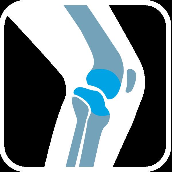 Icon Knee